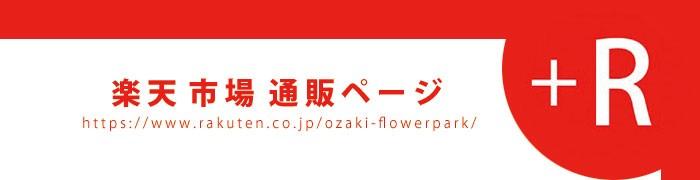 秋植え球根_blog用バナー楽天700px