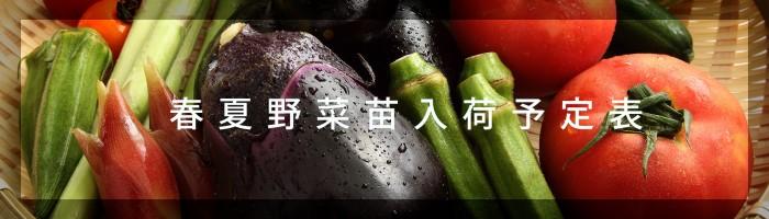 野菜入荷予定バナー