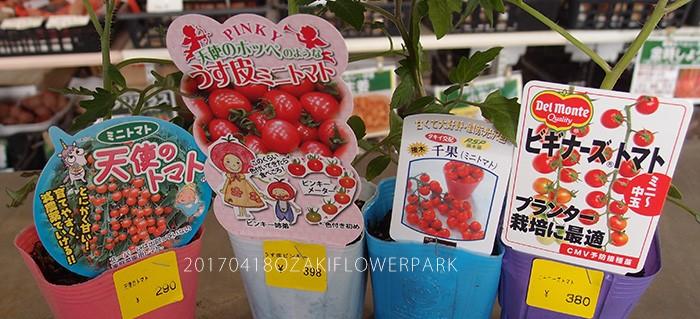 2017夏野菜_トマト002a